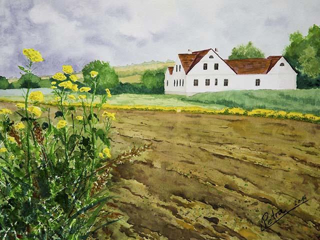 Galerie Landschaften: Haus bei Bogenneusiedl, Aquarell 40/30cm, 201