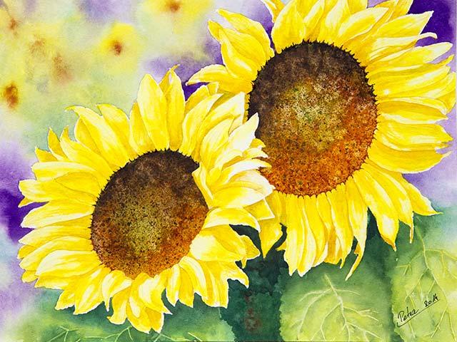 Galerie Blumen: Sonnenblumen, Aquarell 40/30cm, 2014